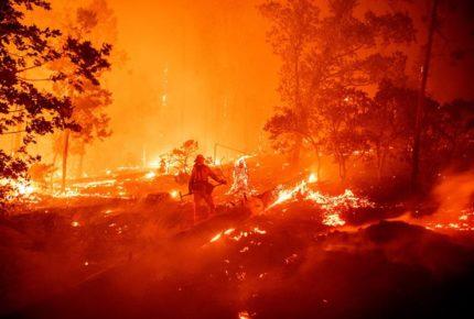 Incendios en California han consumido más de 800 mil hectáreas