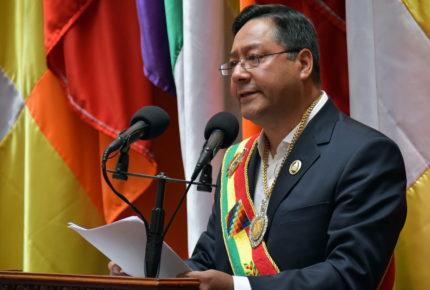 Gobierno de Bolivia y OEA chocan por detención de opositores