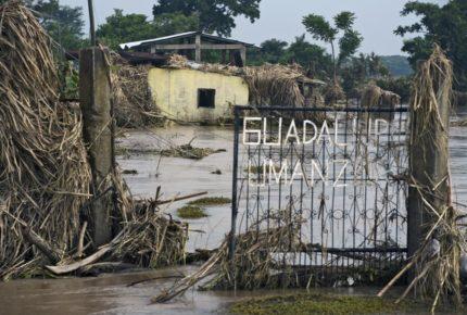 Tormenta tropical ETA llega a Florida