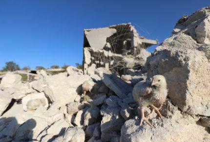 Revelan que Siria utilizó armas químicas en 2018