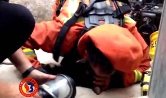 VIDEO | Bombero reanima 'boca a boca' a cachorro tras incendio