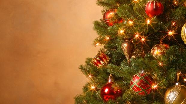 Navidad: Solidaridad y lucha por la paz