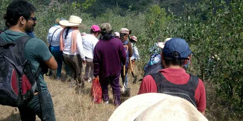 Guerrero: Desaparecen 6 de una familia