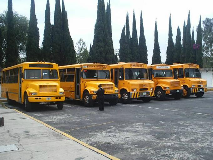 Inconstitucional transporte escolar obligatorio