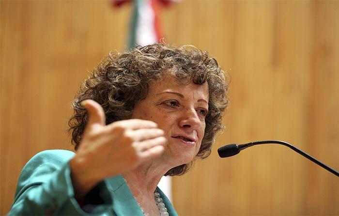 Eliminar incentivos para evitar corrupción: Peschard