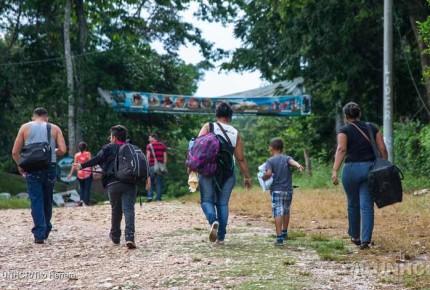 Reclasifican perfil laboral de refugiados en México
