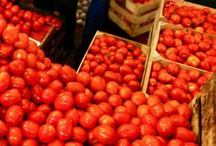 Falta el jitomate, productores piden echar atrás el arancel