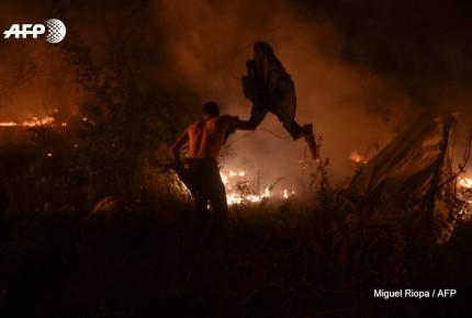 Incendios en Portugal y Galicia dejan ya 39 muertos