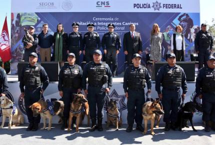 PF jubila a 14 caninos con más de 7 años de servicio