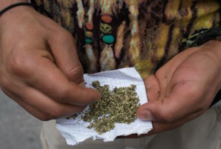 Publican fallo sobre despenalización del uso de mariguana