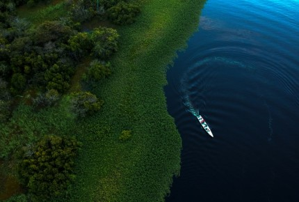 Crece deforestación de la Amazonía en plena pandemia