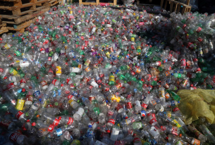 Por consumo de agua embotellada se perderían 1.43 especies al año