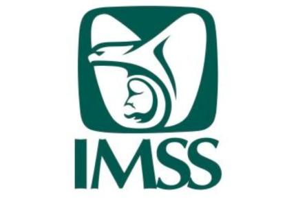Por muerte de 14 bebés en Sinaloa CNDH emite recomendación al IMSS