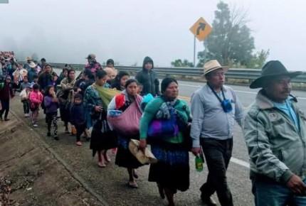 Indígenas desplazados llegan a Chiapa de Corzo; instalarán plantón en la capital del estado
