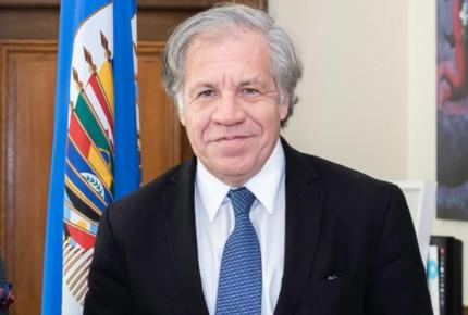 México pide a la OEA a no injerir en asuntos internos de Bolivia