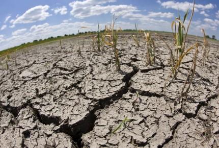 2021, año crucial para detener el cambio climático, advierte la ONU