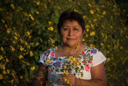 "Leydy Pech, la ""guardiana de las abejas"", gana premio Goldman"