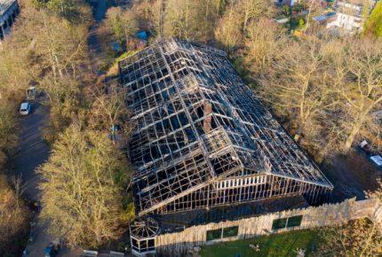 Alemania: incendio en zoológico deja 30 primates muertos