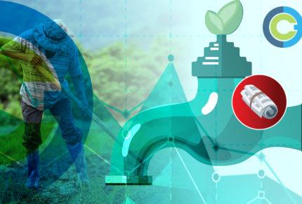 Analítica | El agua de nuestros alimentos