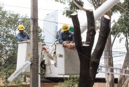 CFE no incrementará tarifas de luz por cuarentena