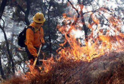 Reportan 86 incendios forestales en México; 12 en áreas protegidas