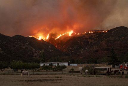 Incendio en California ya consumió más de 8 mil hectáreas