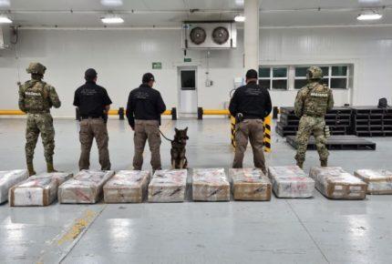 Decomisan casi 700 kilos de cocaína en puerto de Manzanillo