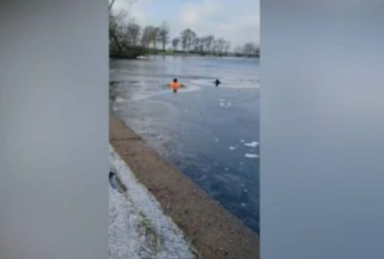 ¡Un héroe! Hombre rescata a perrito de morir en un lago congelado