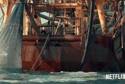 Supera pesca comercial a contaminación plástica en peligro para la vida marina
