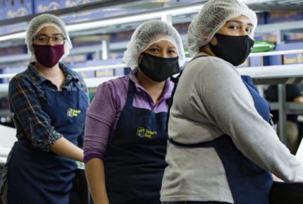 JMC reconoce compromiso integral para la recuperación del empleo en SLP