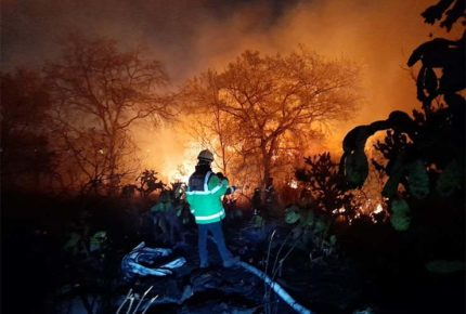 Incendio en Fuentes del Pedregal, controlado en 60%: SGIRPC