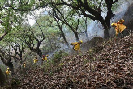 Reportan 70% de control sobre incendio en Tepoztlán