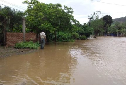 """Tormenta """"Hernán"""" afecta más de 2 mil casas en Jalisco"""