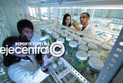 Latinoamérica, sin paridad de género en ciencia y tecnología