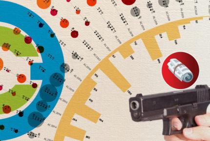 Armas robadas, el problema   bajo la alfombra
