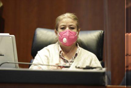 Senadora de Morena se disculpa por declaraciones de Línea 12