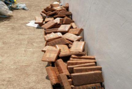 Aduanas decomisa 627 kilos de cocaína en Chiapas