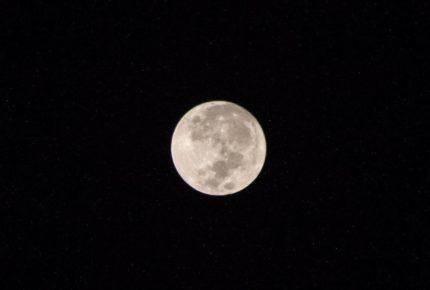 Tras anuncio de NASA, la humanidad podría volver a la Luna