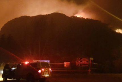 Más de 14 hectáreas consumidas por incendios forestales en NL