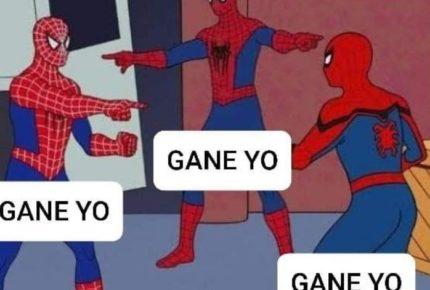 Los memes también votan