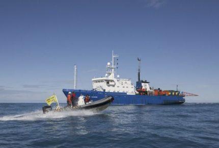 EU prohíbe a México exportar camarón a su territorio